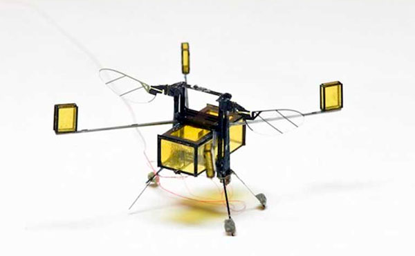 Робот-пчела RoboBee
