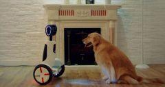 Segway та робот-помічник - 2 в одному, Hoverboard Butler