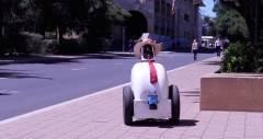 Робот Jackrabbit зі Стенфорда навчиться негласним пішохідним правилам