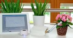 Монітор Phytl Signs дозволить розмовляти з рослинами